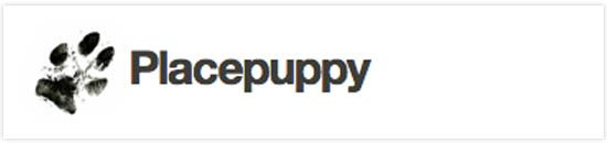 puppy-6708032