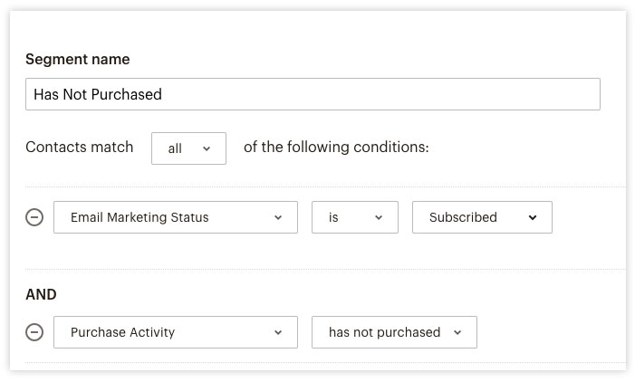 screen shot of segment parameters including email marketing status is subscribed, and purchase activity is has not purchased